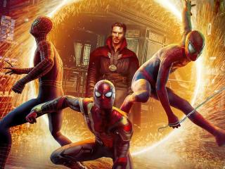 Spider-Man Multiverse Home wallpaper