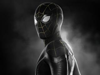 Spider-Man No Way Home 4K wallpaper
