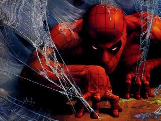 spider man, spiderman, web wallpaper