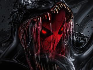 Spider-Man Venom Skin wallpaper