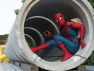 Spiderman Having Fun wallpaper