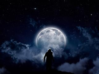 Staring At The Moon wallpaper