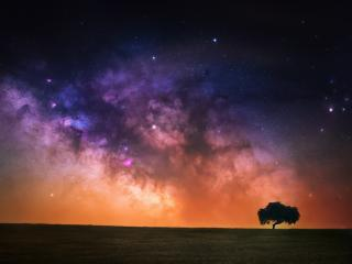 Starry Sky In Open Field wallpaper