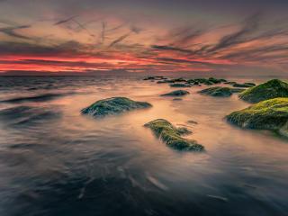 stones, sea, moss wallpaper