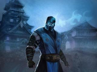 Sub-Zero Cool Mortal Kombat Art wallpaper