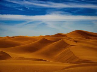 Sunny Day In Desert 4K wallpaper