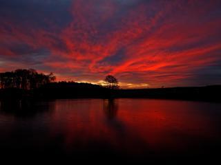 Sunset Pureview wallpaper