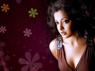 Tanushree Dutta Pretty HD Wallpapers wallpaper