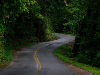 Tennessee Road wallpaper