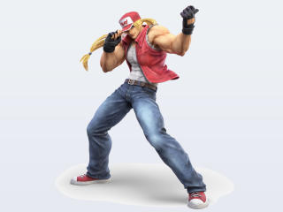 Terry Bogard Super Smash Bros wallpaper