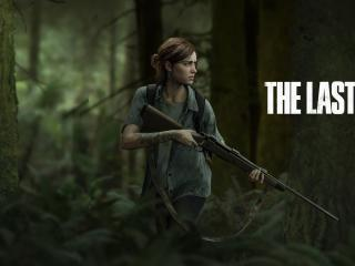 The Last of Us Part 2 PS5 wallpaper