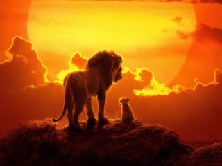 The Lion King 2019 Movie wallpaper
