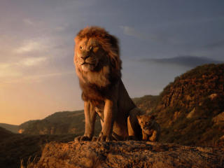 HD Wallpaper | Background Image The Lion King