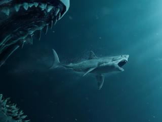 The Meg Sharks and Diver Poster wallpaper