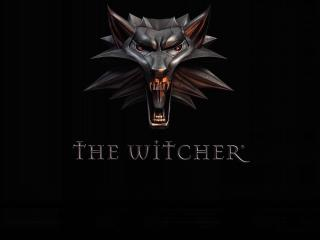 The Witcher Game Wolf Art wallpaper