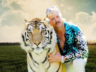 Tiger King Joe Exotic wallpaper