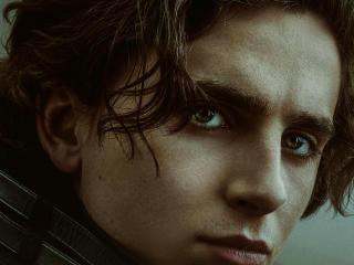 Timothee Chalamet in Movie Dune wallpaper