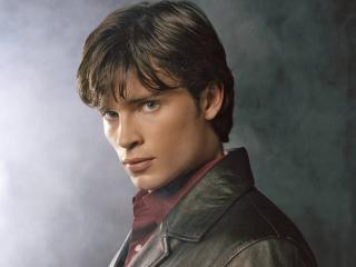 tom welling, actor, brunette wallpaper