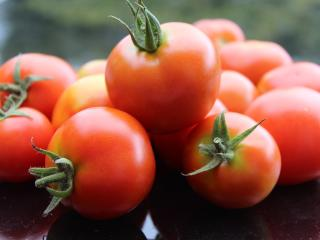HD Wallpaper | Background Image tomato, vegetable, ripe