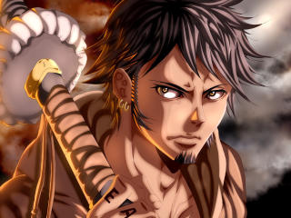 Trafalgar Law One Piece Anime wallpaper