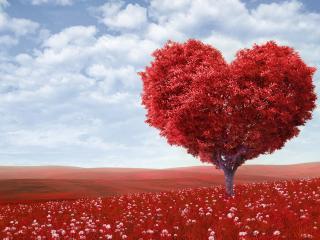 tree, heart, photoshop wallpaper
