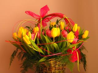 tulips, flowers, bouquet wallpaper