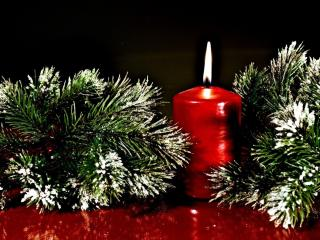 twigs, pine needles, christmas candle wallpaper
