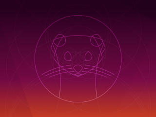 Ubuntu 19.10 wallpaper