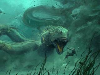 HD Wallpaper | Background Image Underwater Creature