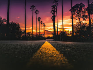 USA California Road Sunlight Street View wallpaper