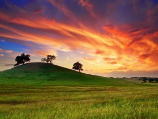 usa, california, sunset wallpaper