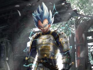 Vegeta Dragon Ball Anime wallpaper