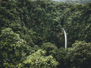 waterfall, trees, top view wallpaper