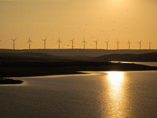 Wind Turbine And Sunrise wallpaper