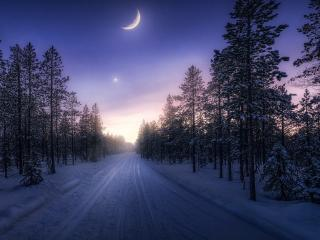 Winter Sunset Photography wallpaper