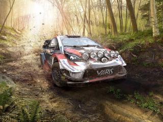 WRC 9 FIA World Rally Championship wallpaper