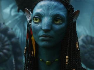 Zoe Saldana as Neytiri in Avatar wallpaper