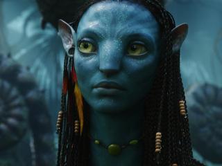 Zoe Saldana as Neytiri in Avatar wallpaper
