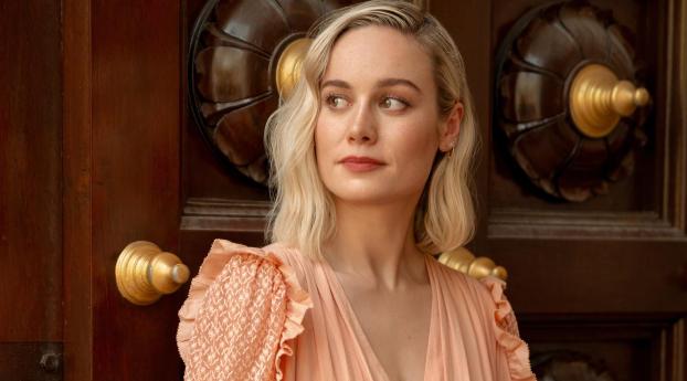 HD Wallpaper | Background Image 2019 Brie Larson Photoshoot