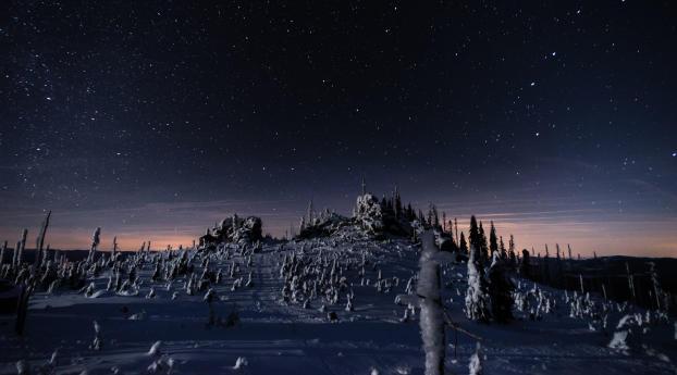HD Wallpaper | Background Image Bavarian Forest National Park