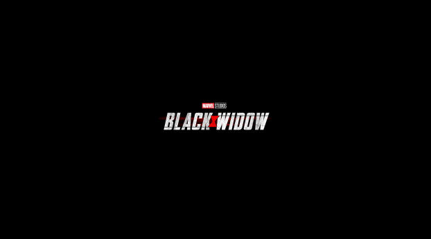 HD Wallpaper | Background Image Black Widow Movie Comic Con 2019