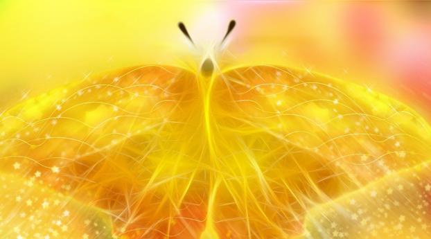 butterfly, shape, line Wallpaper