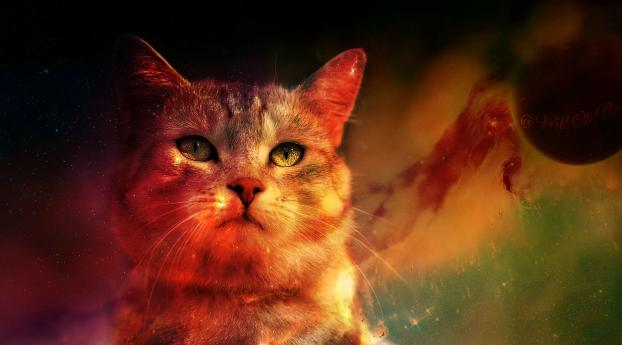 HD Wallpaper | Background Image Cat In Space Digital Art Planet