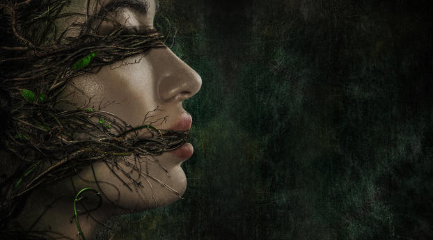 HD Wallpaper | Background Image Crystal Reed Swamp Thing