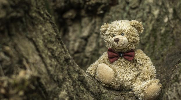 Cute Teddy Bear Wallpaper