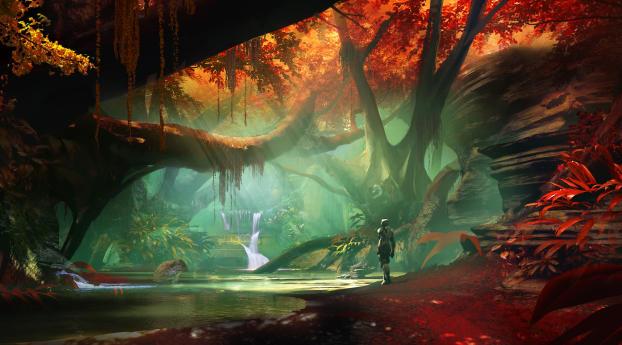 Destiny 2 Forest Wallpaper