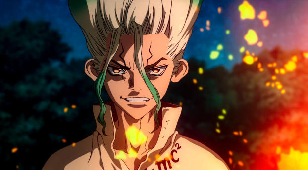 HD Wallpaper | Background Image Dr. Stone Senkuu