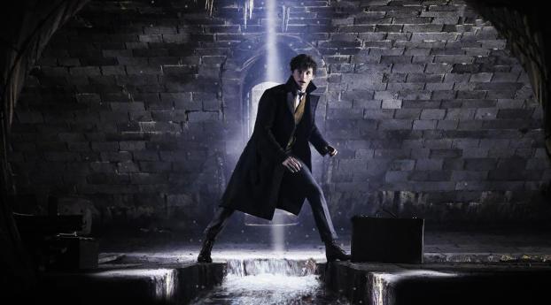 HD Wallpaper | Background Image Eddie Redmayne In Fantastic Beasts