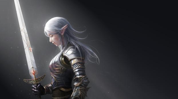 HD Wallpaper | Background Image Elf Warrior