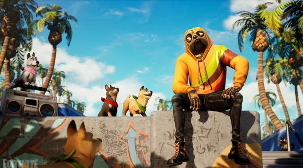 320x240 Fortnite Dog Apple Iphone Ipod Touch Galaxy Ace Wallpaper Hd Games 4k Wallpapers Images Photos And Background